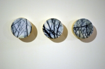 Forest for the Trees, #16. 2013
